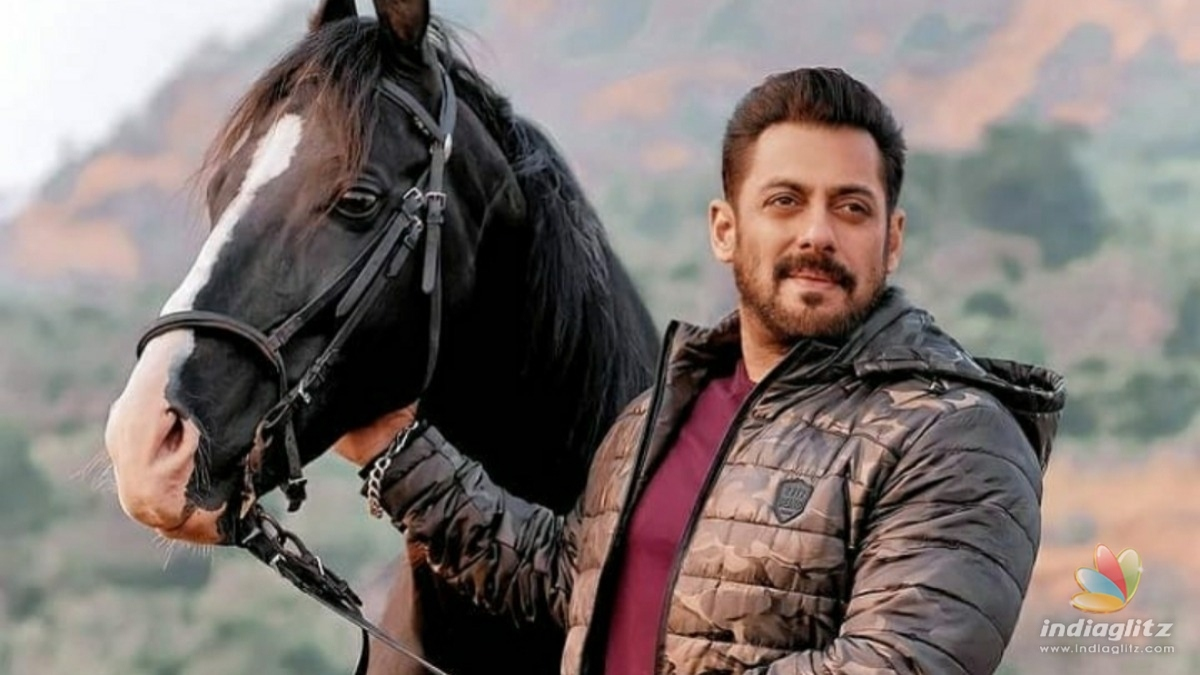 Heres how much Salman Khan is charging for his cameo in Pathan