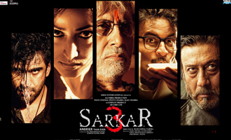 Sarkar 3 Review