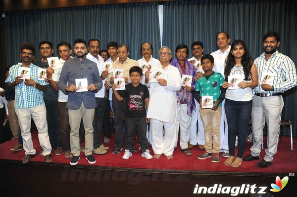 Hoo Manasu Audio Launch