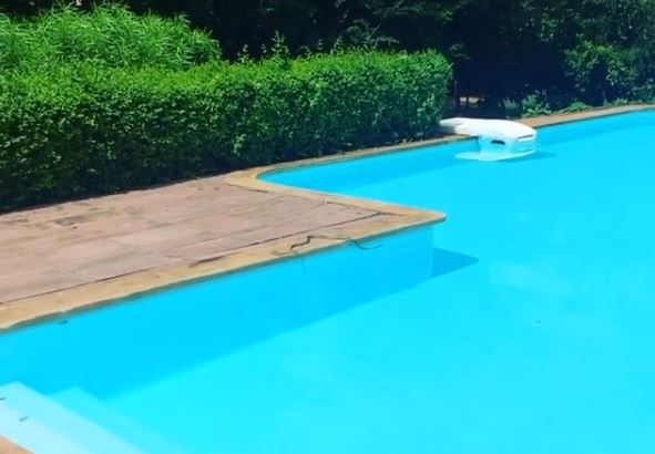 alia bhatt swimming pool