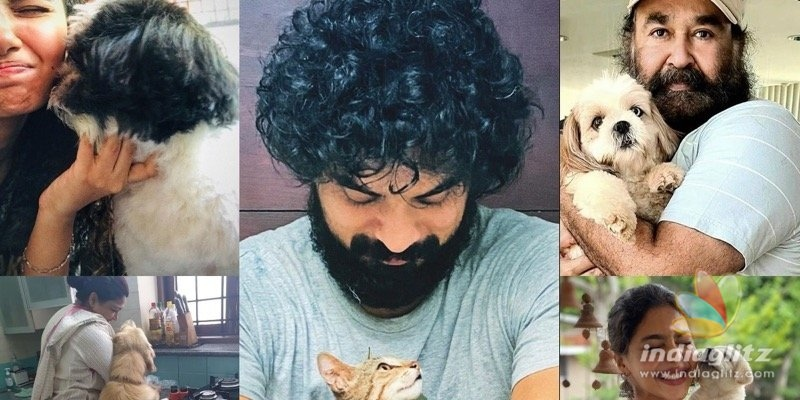 In pics: Malayalam actors and their adorable pets