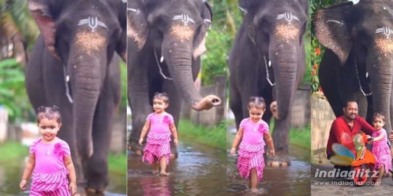 ADORABLE: Meet the viral baby and her elephant