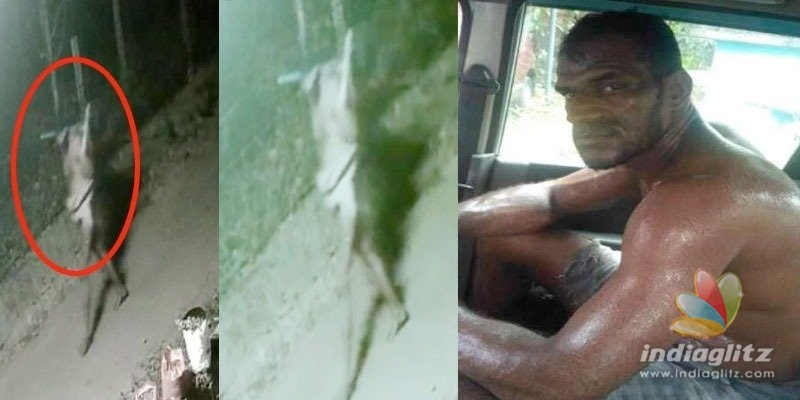 Mysterious giant Black Man: Kerala Polices fresh headache!