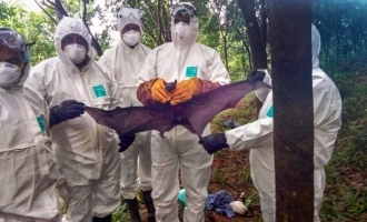 Two people show Nipah virus symptoms