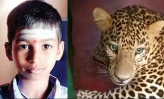 12-year-old boy pierces leopard's eye with finger, escapes dangerous attack