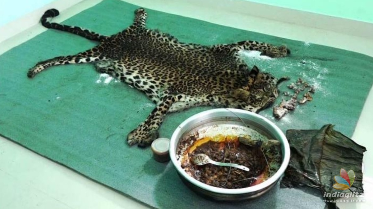 SHOCKING: 5 arrested for killing and eating wild leopard