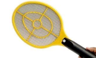 Elderly woman confronts thief with a mosquito bat