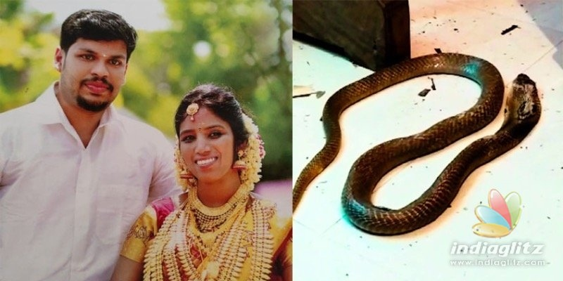 Snakebite death of woman, husband arrested; Shocking murder plan!