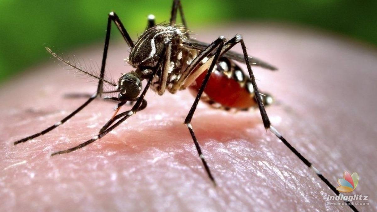 Zika virus: Alarming number of cases reported in Kerala