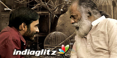 Aadukalam Review Aadukalam Tamil Movie Review Story Rating Indiaglitz Com
