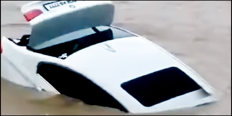 Cops: Son Asked for Jaguar, Pushed BMW He Got Into River