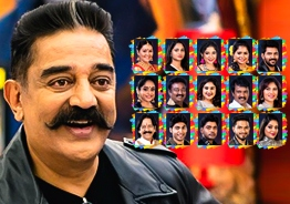 Bigg Boss 3 contestants profile