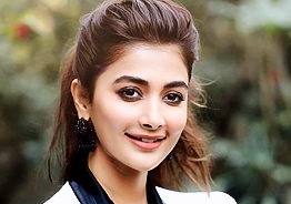 Pooja Hegde's official clarification on Tamil comeback!