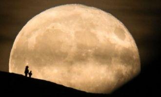 first moon tourist to the moon space x musk tesla yusaku maezawa