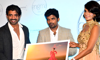 Celebs at Enchanted Enigma 2015-2016 Calendar Launch