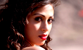 Sadha not to do heroine-driven films