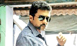 Write your own review on 'Singam 2'