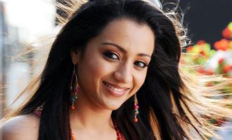 Trisha gets into Sundar C's Palace