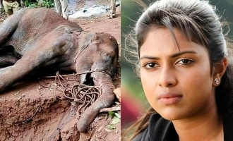 Pregnant elephant killers - Amala Paul suggests apt punishment