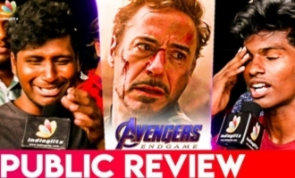 'Avengers Endgame' Public Review