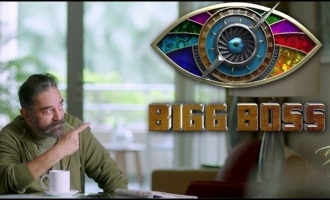 A celebrity similar to Arav and Kavin in 'Bigg Boss 4'