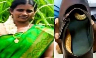 ஷூவுக்குள் பாம்பு: சென்னை பெண்ணுக்கு நேர்ந்த விபரீதம்