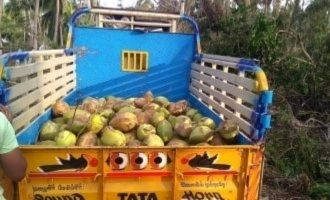 Delta farmers load relief lorries with tender coconuts to show gratitude