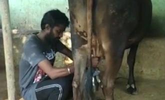 கொரோனா விடுமுறையில் பால் கறக்க கற்று கொண்ட 'மாஸ்டர்' நடிகர்
