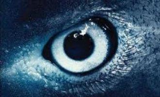 Shankar's awe-inspiring '2.0' VFX breakdown video will stun you
