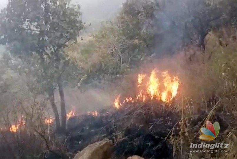 Trekking club shut down after Theni forest fire