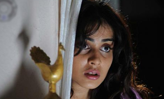 Genelia Escapes Bomb Blast
