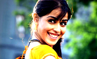 Genelia's family to get a new member