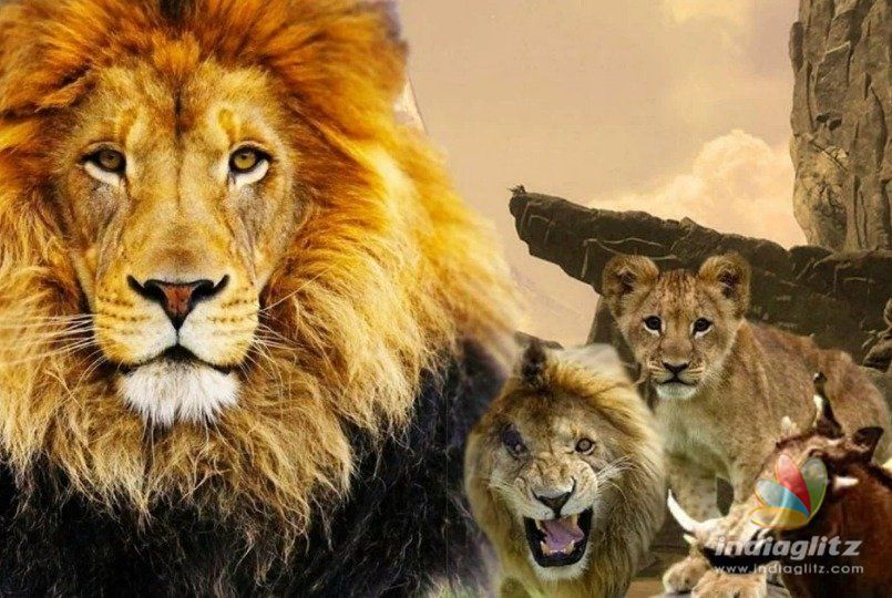 Royal Cuteness The Lion King Live Action Teaser Is Here