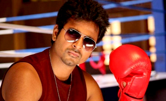 Sivakarthikeyan and another Boxing oriented film