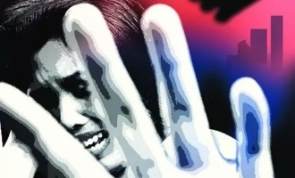 Accused actor allowed to view actress molestation video