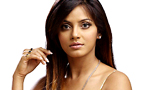 Neetu Chandra's Hollywood Entry