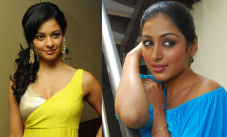 Parvathi Menon, Pooja Kumar and Padmapriya together in a new movie
