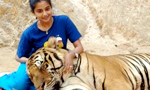 Priyamani's date with Tigers at 'Tiger Temple'