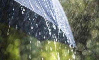 Tamil Nadu-Kerala rain forecast updates