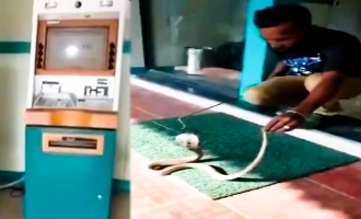 Video: Snake found in ATM in TN
