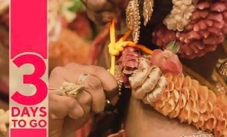 சோனியா அகர்வாலுக்கு திருமணமா? வைரலாகும் வீடியோ