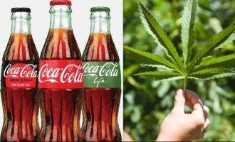 Coca-Cola to get a marijuana ingredient in it!