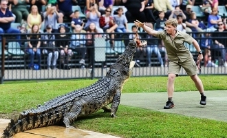 Steve Irwin's son recreates iconic 15-year-old crocodile feeding picture