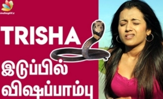 Poisonous Snake in Trisha's hip - Makeup Sreedhar