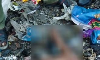 சென்னை குப்பைக்கிடங்கில் கிடந்த இளம்பெண் கை,கால்கள்: திடுக்கிடும் செய்தி