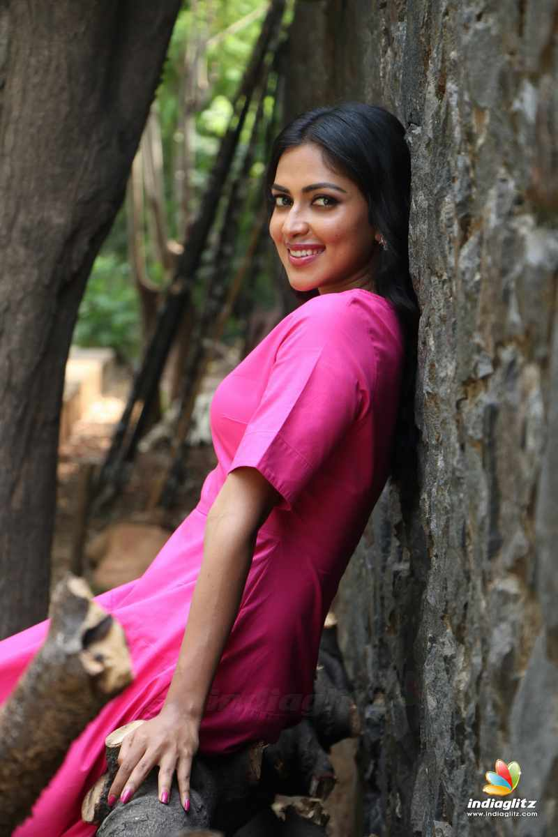 amala paul photos - bollywood actress photos, images, gallery