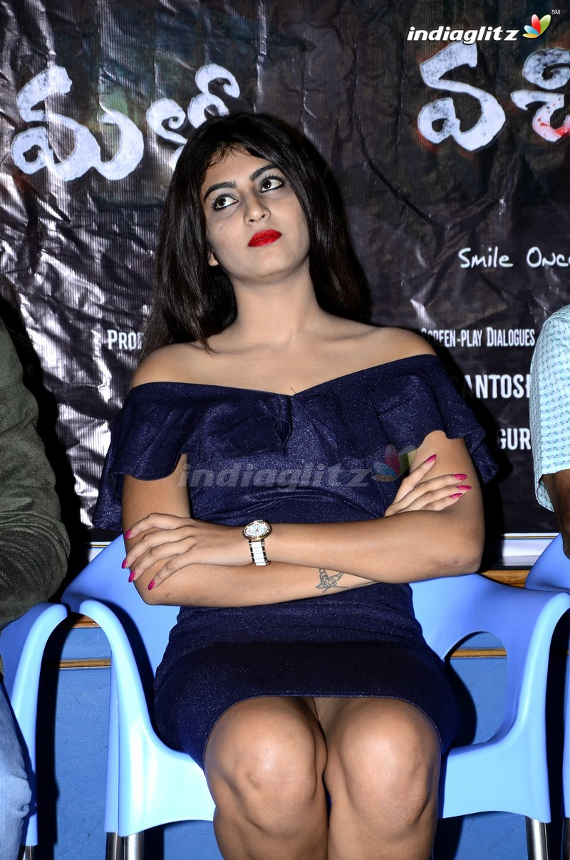 'Malli Vachinda' Press Meet
