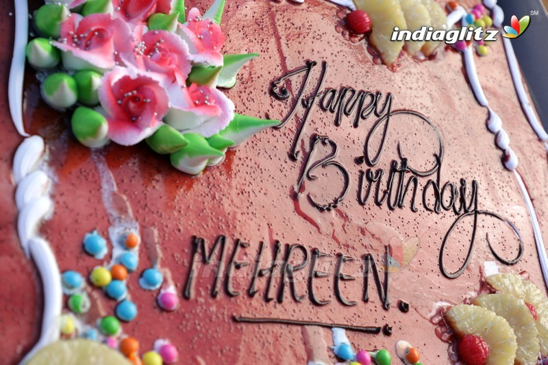 Mehrene Kaur Pirzada Birthday Celebrations
