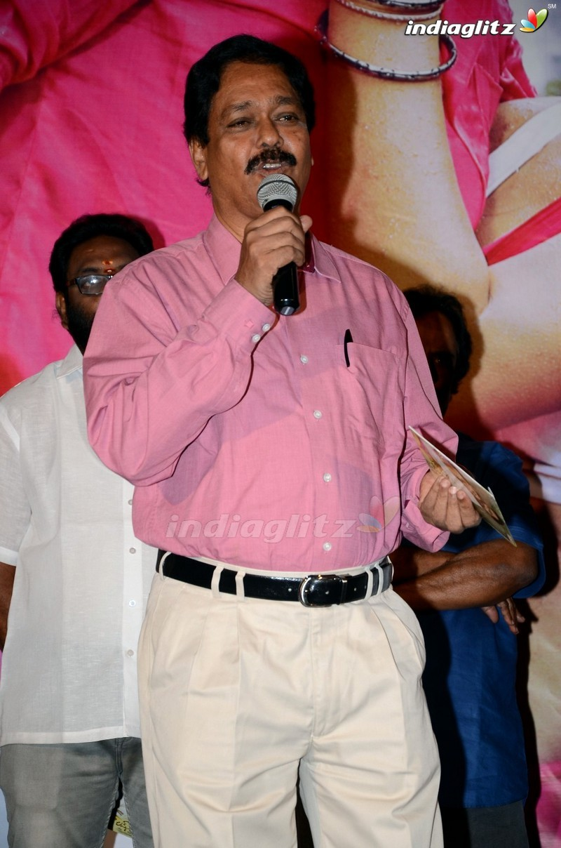 'Naa Love Story' Audio Launch