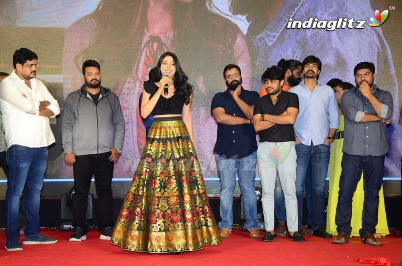 'Thipparaa Meesam' Pre Release Event